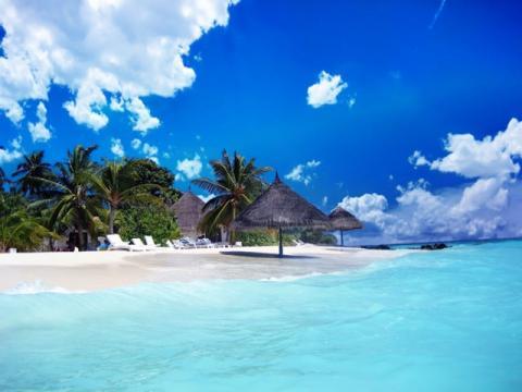 Один только взгляд на Багамский пляж вызывает желание поехать в тур на эти острова.