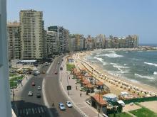 Александрия египетская рада приветствовать своих гостей