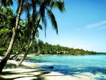Берег Индийского Океана в районе курорта Гоа