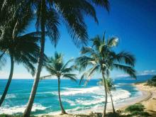 Пдяж в Доминикане. Чудесное место для отдыха