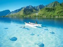 Богатейшая флора и фауна побережья Доминиканы добавит колорита в ваш отдых