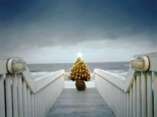 Новогодние праздники на море – экзотика доступная каждому
