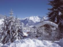 Уютные коттеджи на горнолыжном курорте Вербье