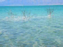 Так выглядит Мертвое море – туристическая жемчужина Израиля